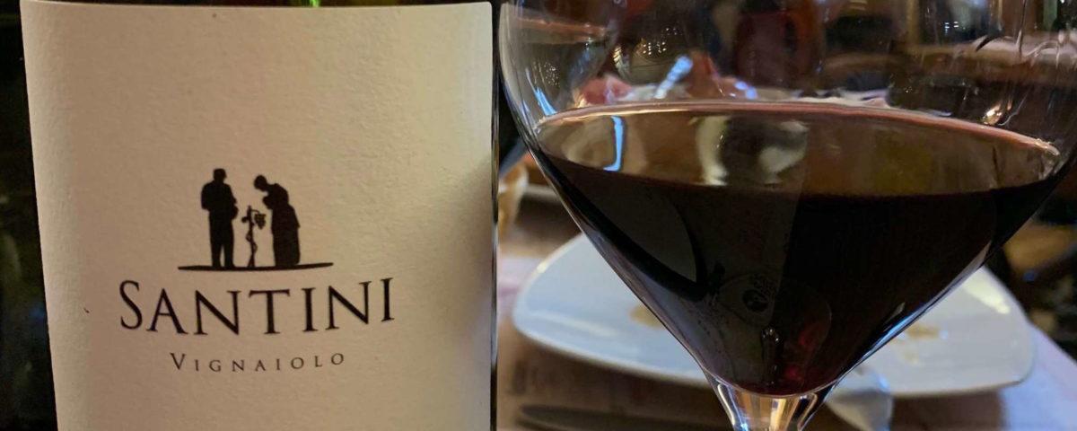 vino bolgheri